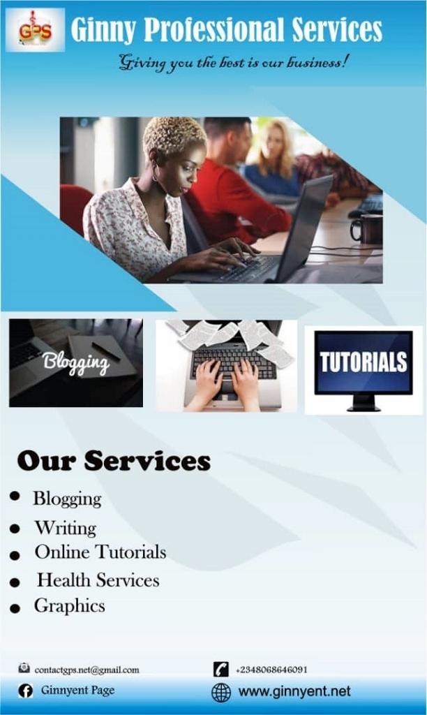 GINNY PROFESSIONAL SERVICES – ginnyent